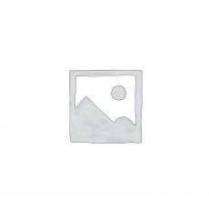 როუჯი 2007-2017